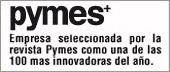 Pymes 2010